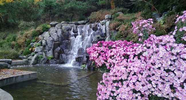 Idyllisch, der Wasserfall.