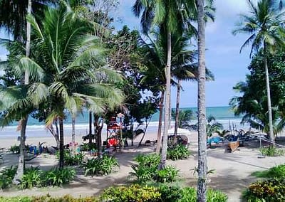 Sonne, Strand, Palmen